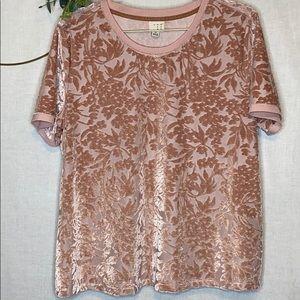 Target a•new•day Pink Velvet Top XL
